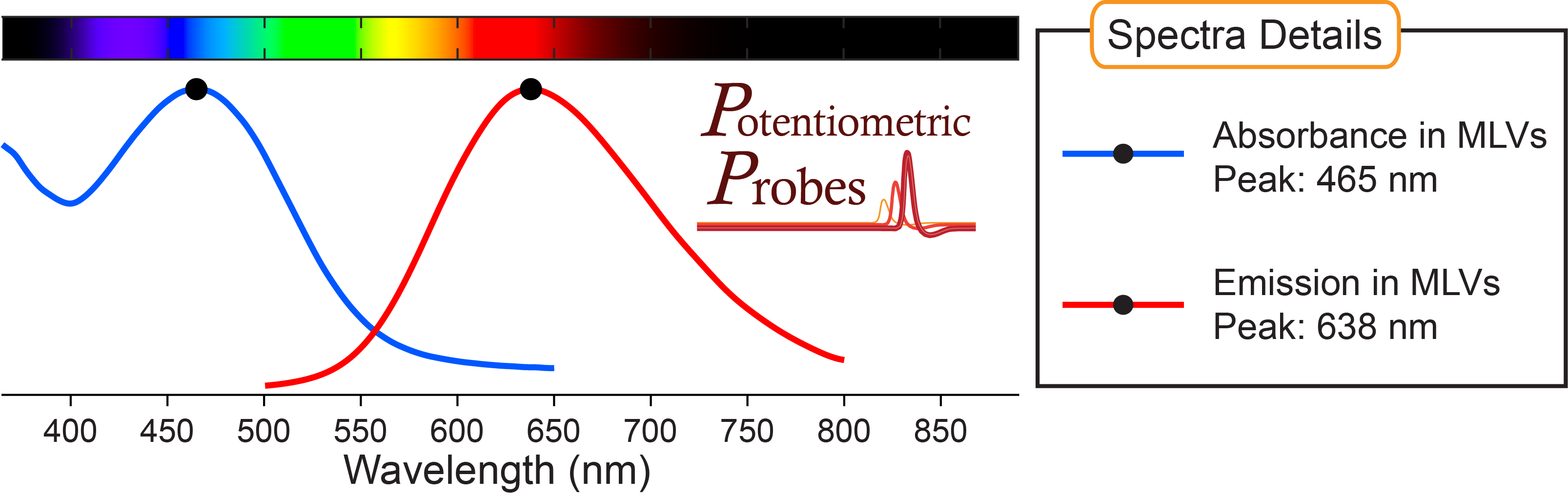 Spectra in MLVs of voltage-sensitive dye Di-4-AN(F)EP(F)PTEA from Potentiometric Probes