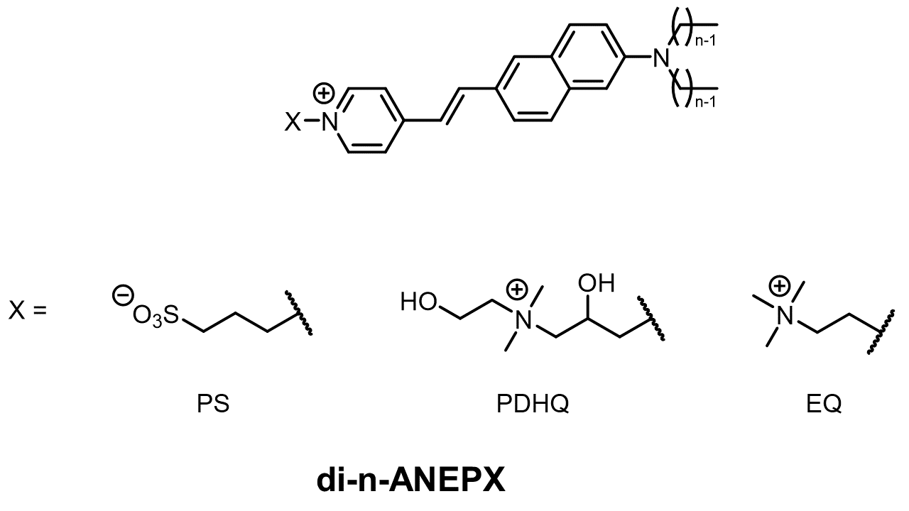 Nomenclature guide for ANEP VSDs